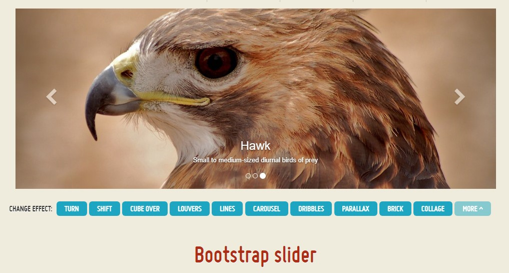 Bootstrap Content Slider