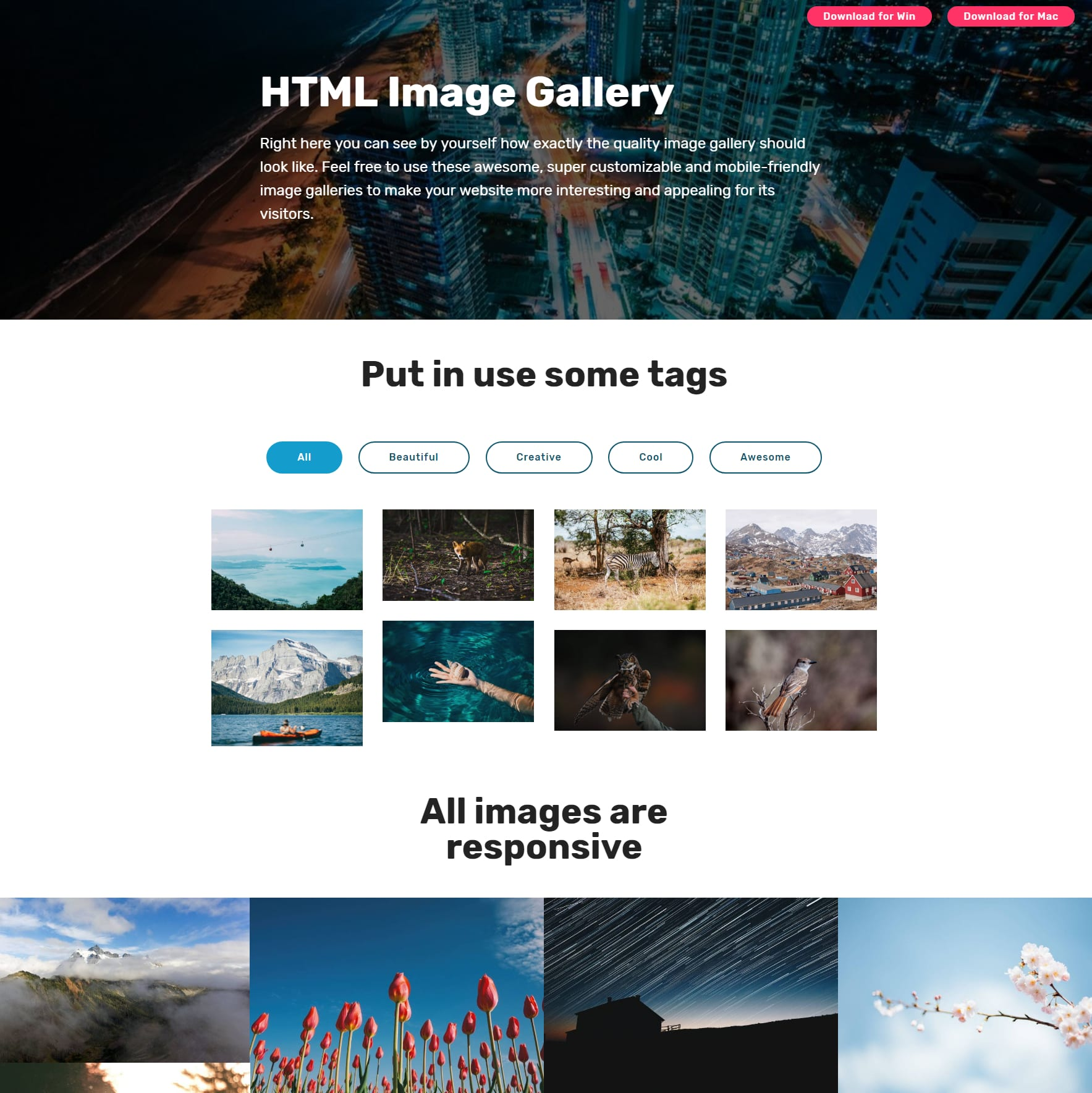 HTML Bootstrap Picture Gallery