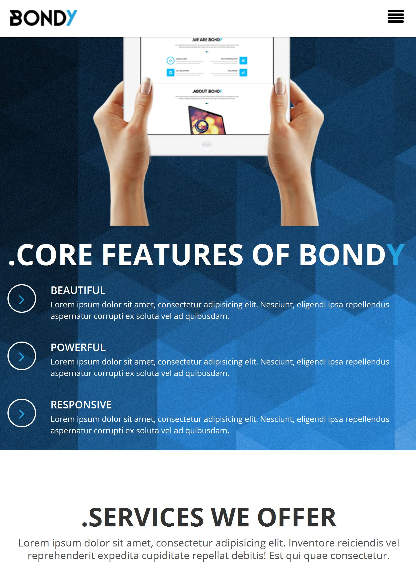 Bootstrap Theme Template